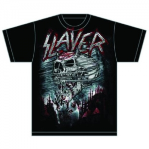 Slayer - Demon Storm, T-Shirt schwarz